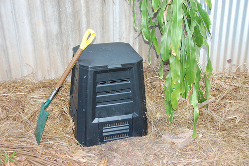A compost Bin