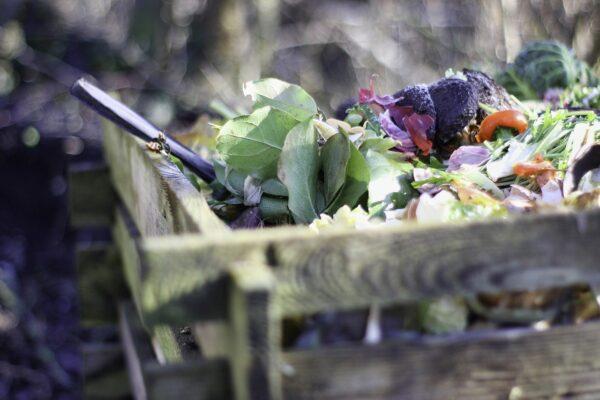 full compost bin